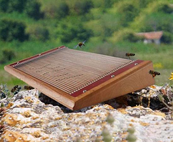 دستگاه زهرگیر زنبور
